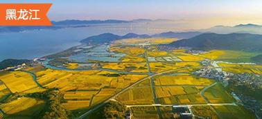 黑龙江土地整治项目造价软件