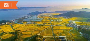四川土地整治项目造价软件
