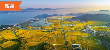 新疆土地整治项目造价软件